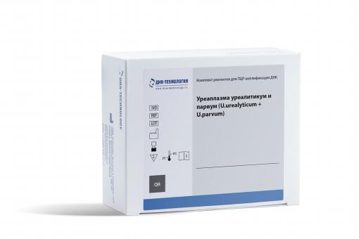 Ureaplasma urealyticum + parvum